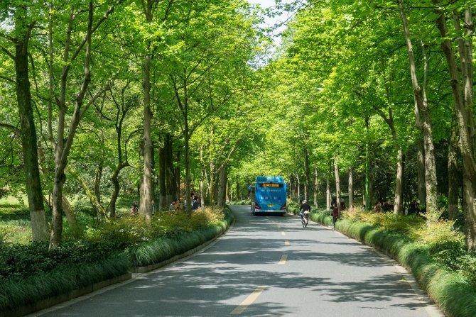 Radom zakupi 10 autobusów elektrycznych