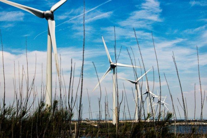 Polenergia szykuję się na aukcje dla wiatru i PV