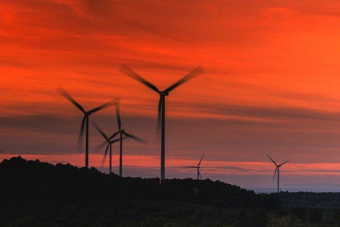 Amazon skupia się na energetyce wiatrowej