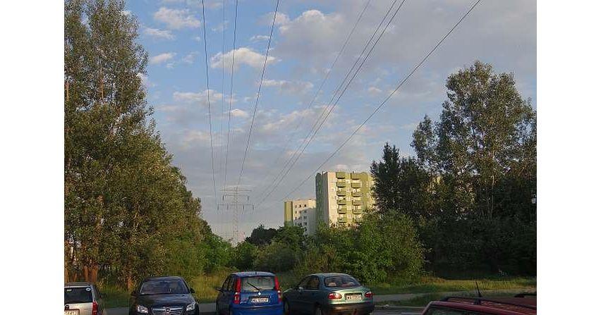 Oddziaływanie linii i stacji elektroenergetycznych na środowisko (cz.1) - wpływ pól elektromagnetycznych niskiej częstotliwości na organizmy żywe