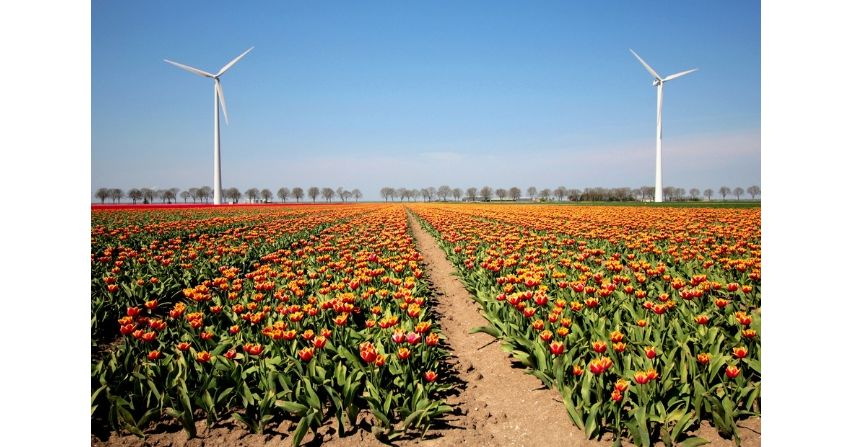 innogy rozpoczyna budowę farmy wiatrowej w Żukowicach