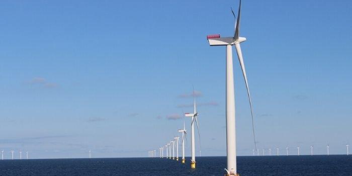 Nowatorski projekt badawczy nt. produktywności morskich farm wiatrowych