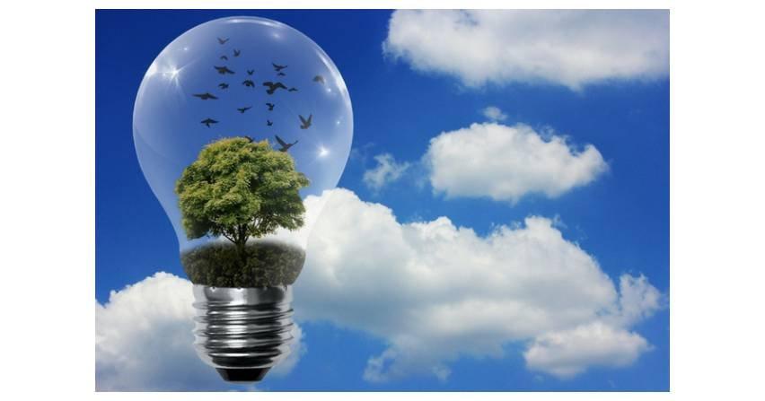 Energii odnawialnej w umowach PPA wystarczyłoby dla całej Francji