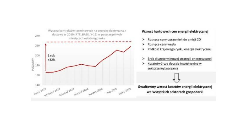 Prognoza cen energii elektrycznej i taryf dla odbiorców w Polsce - raport IEO