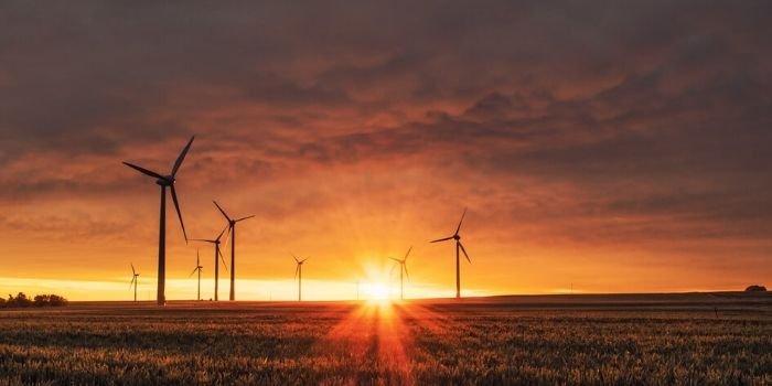 Według Ministerstwa Klimatu Polska już niedługo będzie placem budowy dla OZE
