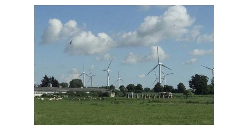Maksymalne ilości i wartości energii elektrycznej z odnawialnych źródeł energii, które mogą być sprzedane w drodze aukcji