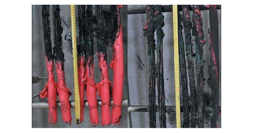 Reakcja na ogień kabli bezhalogenowych oraz kabli na bazie PVC