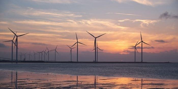 Największa pływająca farma wiatrowa koncernu Total
