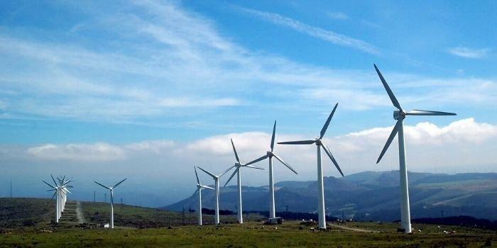 Wg MR ewentualne uelastycznienie zasady 10H dla farm wiatrowych możliwe po spełnieniu pewnych warunków