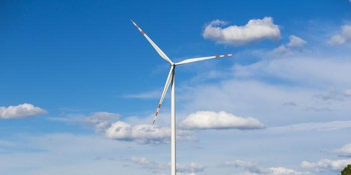 Firma Wedel przechodzi w 100 proc. na energię wiatrową