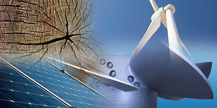 Cena energii elektrycznej w aukacjach OZE