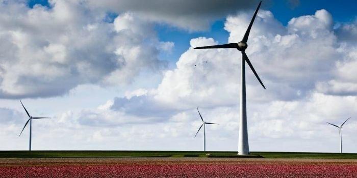 OZE z najwyższym udziałem w produkcji energii elektrycznej w UE w I poł. 2020 roku