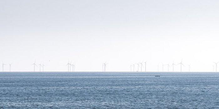 Konfederacja Lewiatan proponuje zmiany w projekcie morskich farm wodnych