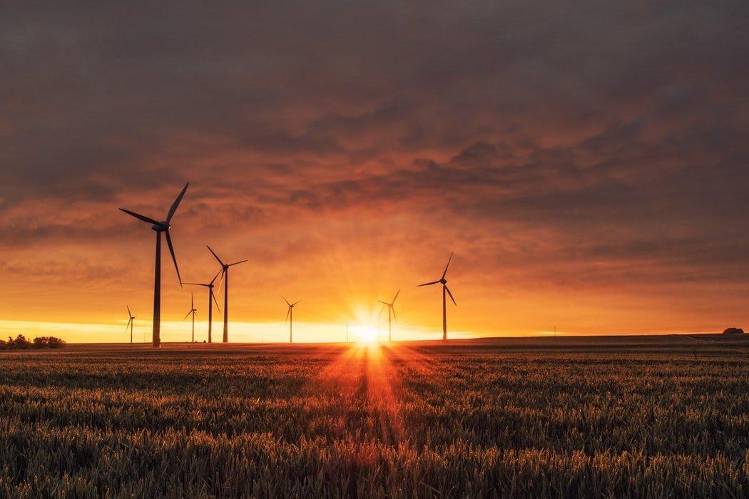 PGE: neutralność klimatyczna do 2050 roku