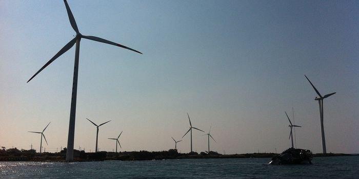 PGE i Ørsted zbudują morskie farmy wiatrowe na Bałtyku