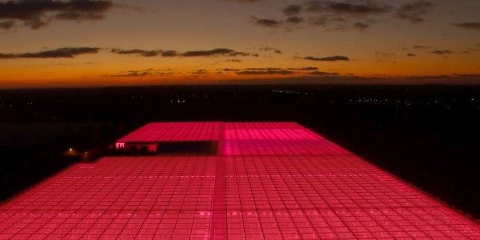 Oświetlenie LED w szklarni