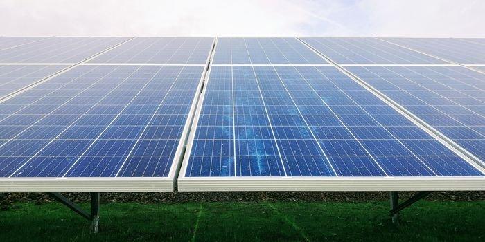 Esoleo zbuduje zakład recyklingu paneli słonecznych