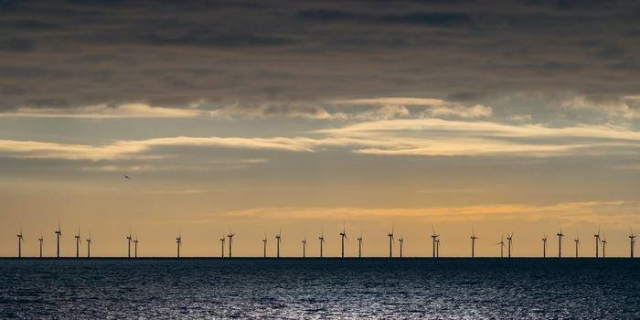 Morska energetyka wiatrowa – nowy kierunek studiów
