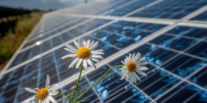 Kolejne instalacje fotowoltaiczne przyłączone przez Energę