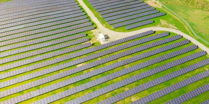 ZE PAK zamontowało 155 000 modułów PV na Farmie Brudzew