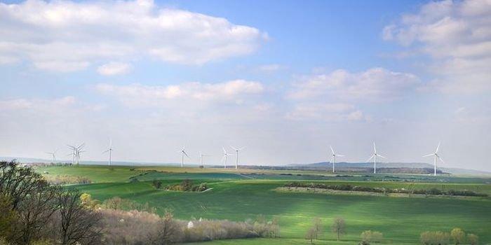 Niskie prędkości wiatru odbiły się na zyskach firm z branży OZE
