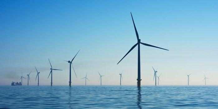 """PSEW: Nie będzie """"Nowego Ładu"""" bez energetyki wiatrowej"""