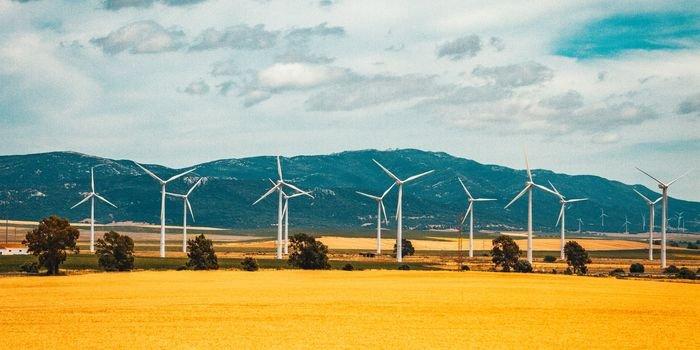 Energia z OZE o połowę tańsza niż z paliw kopalnych