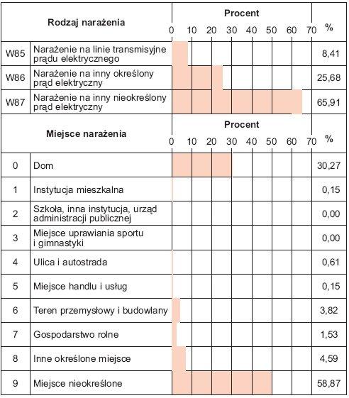 Rys. 1. Rozkład śmiertelnych wypadków porażeń prądem elektrycznym w Polsce w latach 2005–2009 w zależności od rodzaju i miejsca narażenia