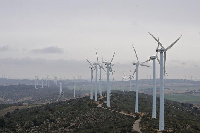 Czy branża wiatrowa w Polsce jest zagrożona? Fot. pixabay.com