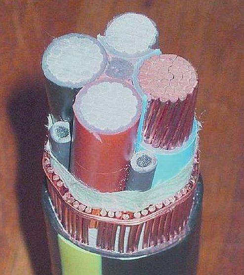 Rys. 10.  Szwajcarski kabel dostosowany do prądów wieloharmonicznych; rys. K. Wincencik, M. Jaraczewski