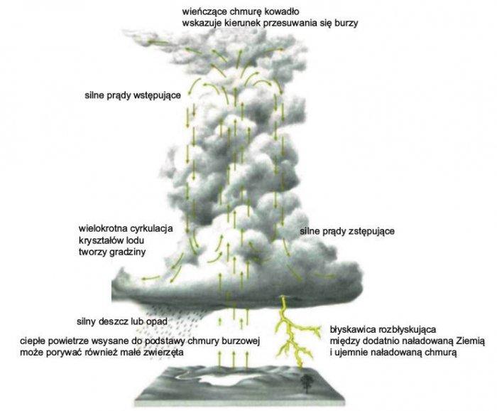 Rys. 1.  Mechanizm powstawania wyładowań piorunowych
