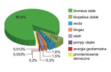 Rys. 4.   Bilans nośników energii odnawialnej w Polsce w 2009 roku