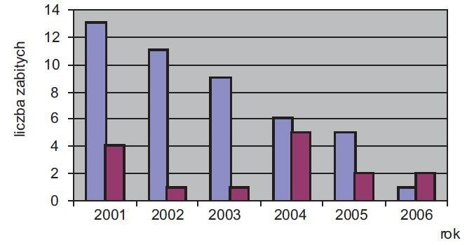 rys 3 liczba ludzi zabitych przez pioruny w polsce na podstawie danych gus