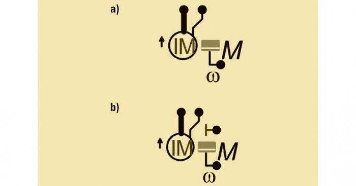 Rys. 1. Symbol graficzny modelu ma 2 postacie: a) z rys. 1 a, i b) z rys. 1b. Szczegóły zawarte są w tekście. Fot. B. Karolewski