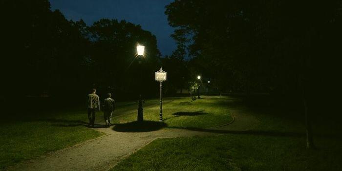 TAURON zainstalował innowacyjne oświetlenie na Opolszczyźnie. Fot. TAURON