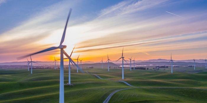 Elektrownia wiatrowa. Fot. Unsplash